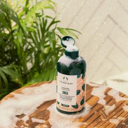Sviestmedžių atkuriamasis šampūnas